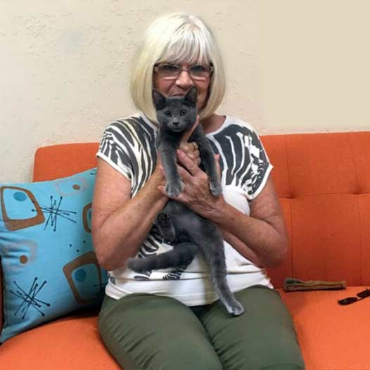 Blue cat adopted July 31 2019