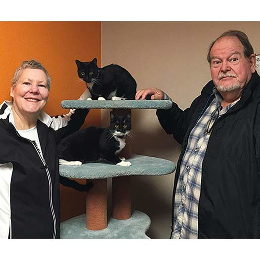 Boots and Quill cats adopted January 29 2020 through our Free Pets for Vets program