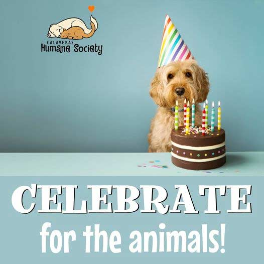 Celebrate for the animals