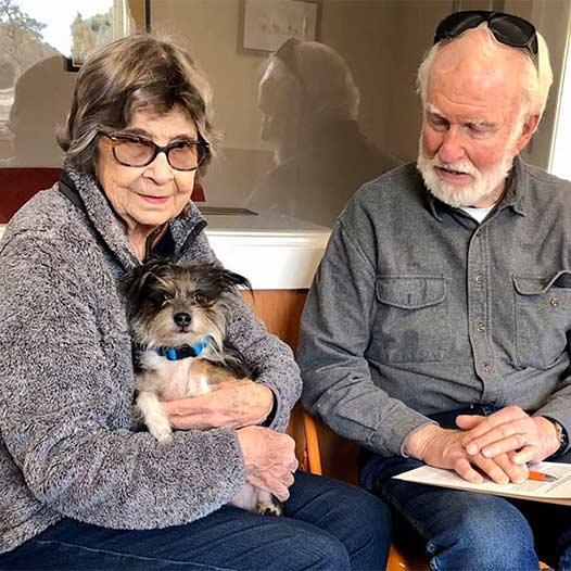 Joe dog adopted January 10 2020 through our Seniors for Seniors program