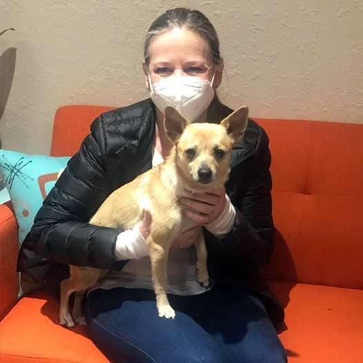 Laila dog adopted January 29 2021