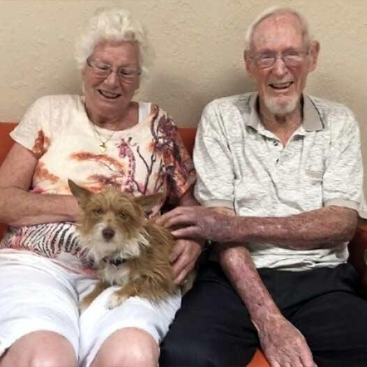Marsha dog adopted July 31 2019