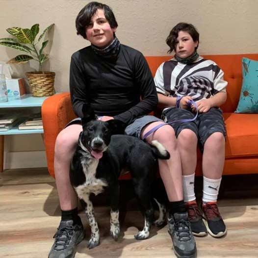 Rose dog adopted January 20 2021