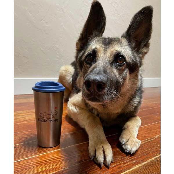 Sam the dog on Calaveras Chamber of Commerce Mugshot Monday