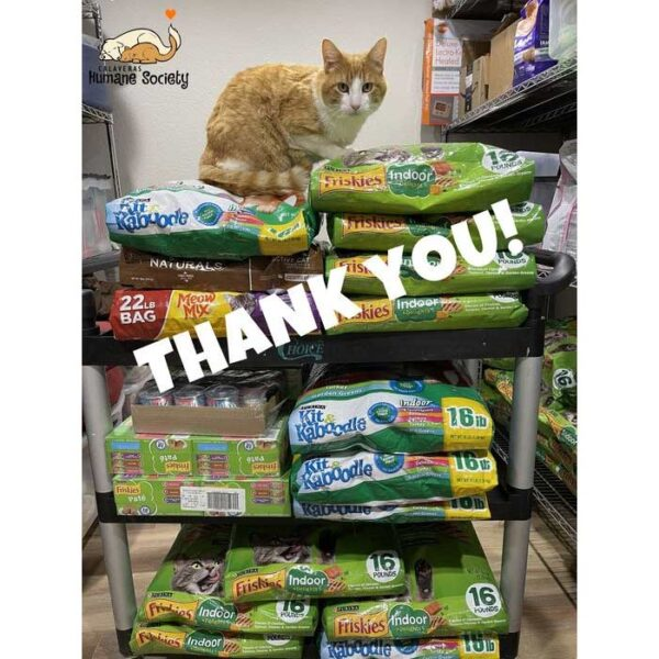 Thank you for your donations, from the kitties who use the Pet Food Bank