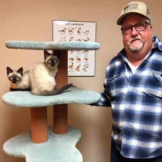 Venus and Athena cats adopted January 24 2021