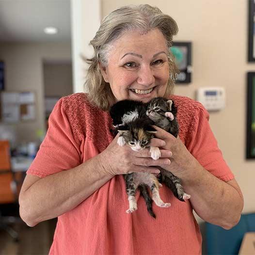 Lorrie loves kittens