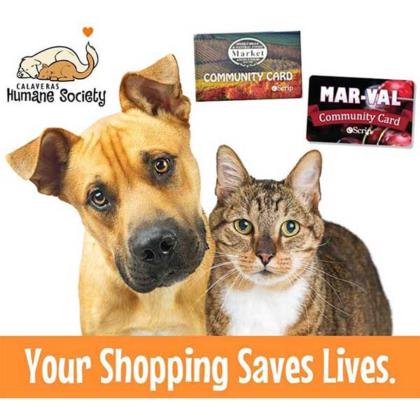 Your Shopping Can Save Lives