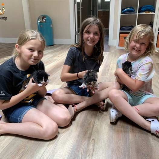 Fostering Pets Is A Great Family Project