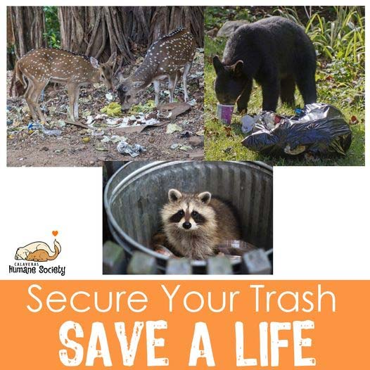 Secure your trash and save a life!